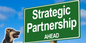 Strategic Partnership in the field of education, training and youth
